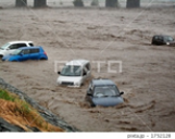 台風19号、「車中死」が3割